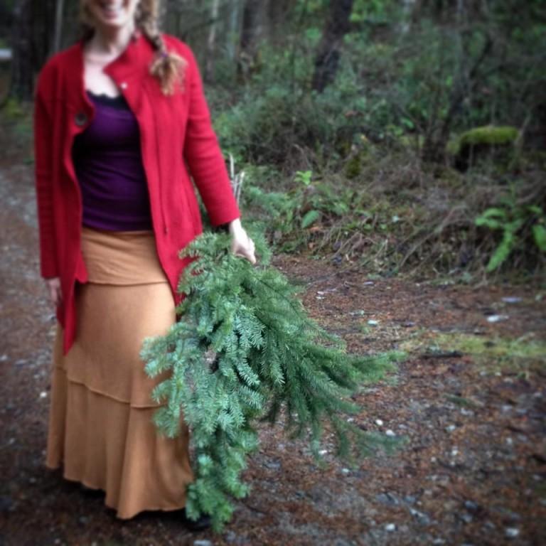 solstice-tree4